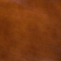 """0466рыже-коричневый (Коллекция &QUOTРодос"""") (глянец, экокожа)"""